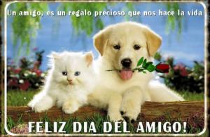 postales-feliz-dia-del-amigo-tarjeta-imagen-fondo-feliz-dia-del-amigo-amistad-9